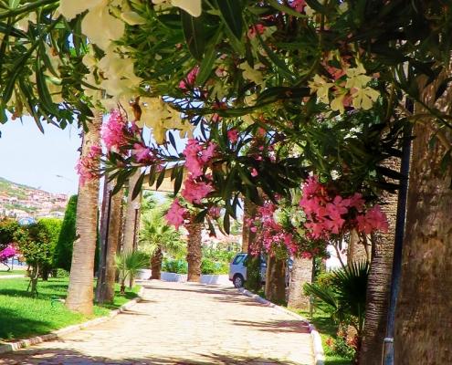 Park Türkei